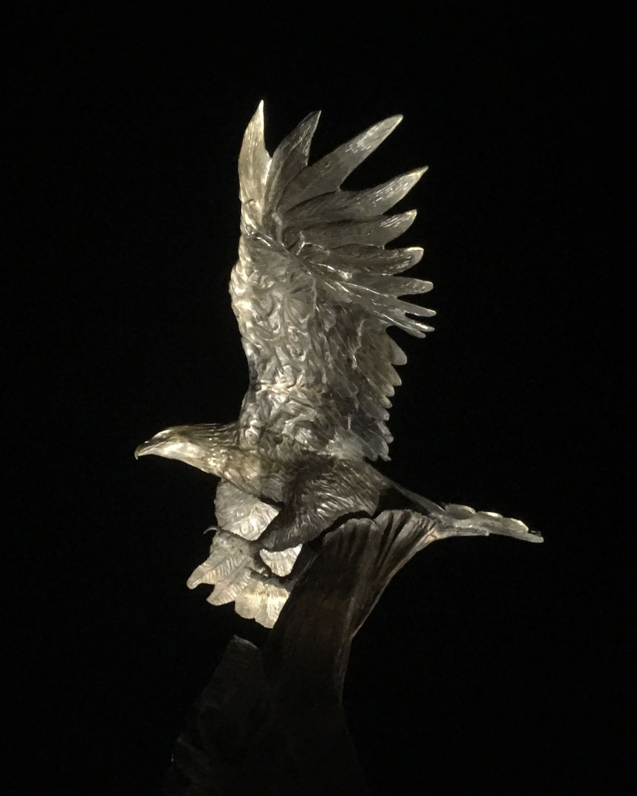 Bronze Eagle Black Background Bird One Animal Spread Wings Animal Themes Close-up No People Outdoors Bald Eagle Black Background Animal Wildlife Flying Night Photography Memorial Sculpture Florida Navarre Blackhawk Memorial Military Helicopter Bronze Sculpture