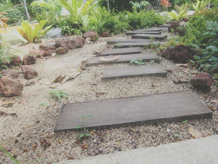 Path Garden