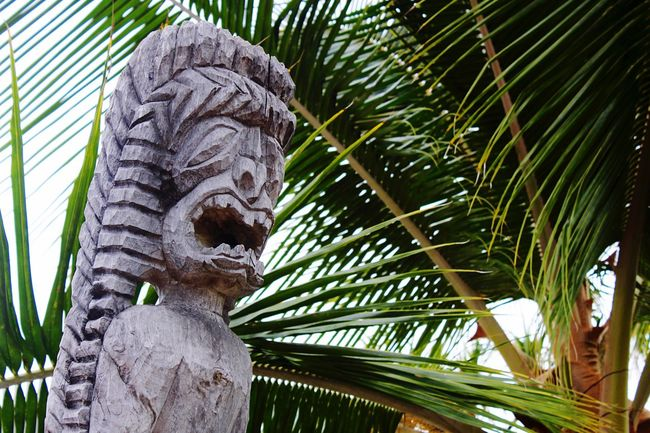 Hawaii Big Island Sculpture Outdoors Traditional Palm Leaf Polynesian
