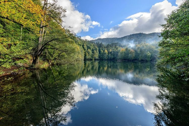 Yedigoller Landscape Autumn Colors Lake Reflection Water Reflections Trees