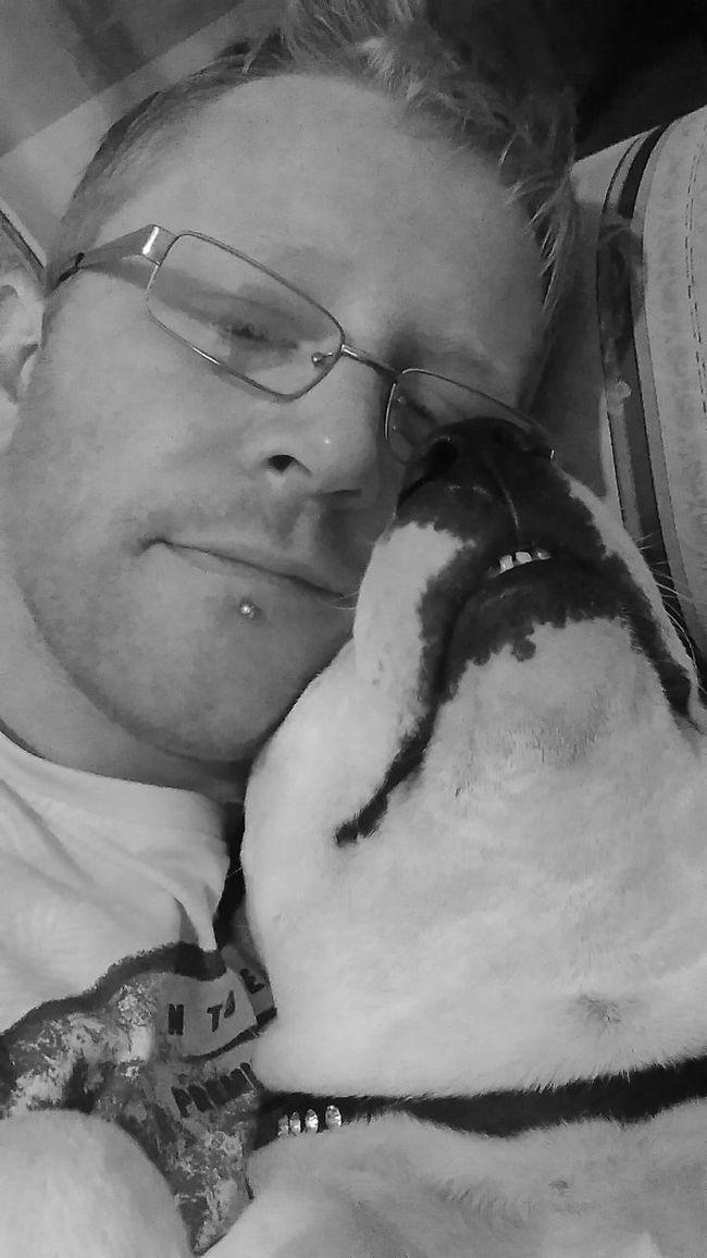 Staffylove Relaxation Sleeping Lying On Back Domestic Life Blackandwhite Staffordshire Bull Terrier Staffylover Staffygram Staffysmile Ilovemydog
