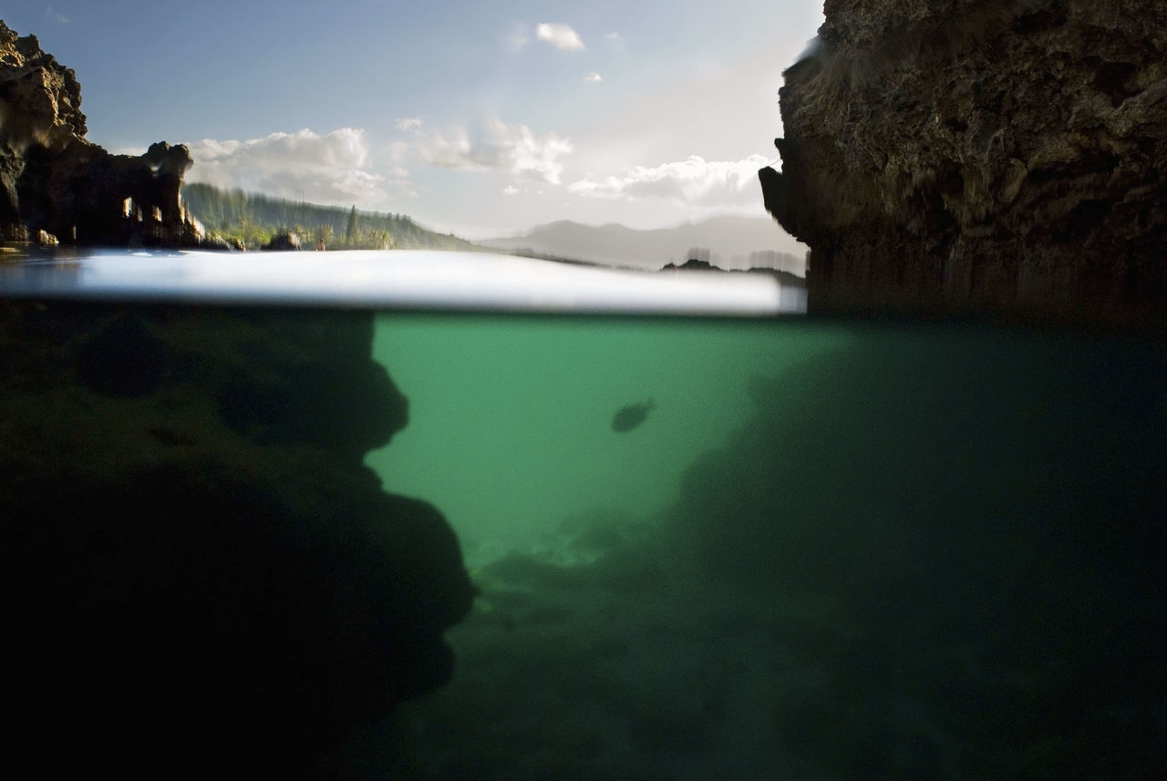 Beauty In Nature Fish Green Ocean Green Sea Hawaii Majestic Mountain Nature No People Oahu Oahu, Hawaii Ocean Outdoors Remote Rock Rock - Object Sea Sea And Rocks Sea And Sky Tourism Tranquil Scene Tranquility Underwater Water
