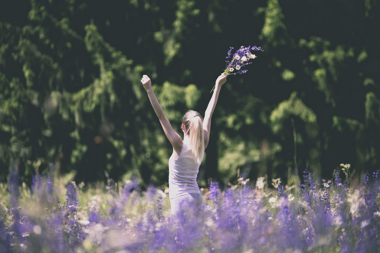 Beautiful stock photos of woman, Arms Raised, Beauty In Nature, Blond Hair, Caucasian Ethnicity