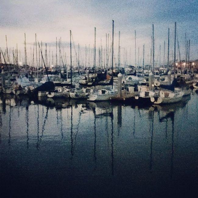 Home sweet harbor