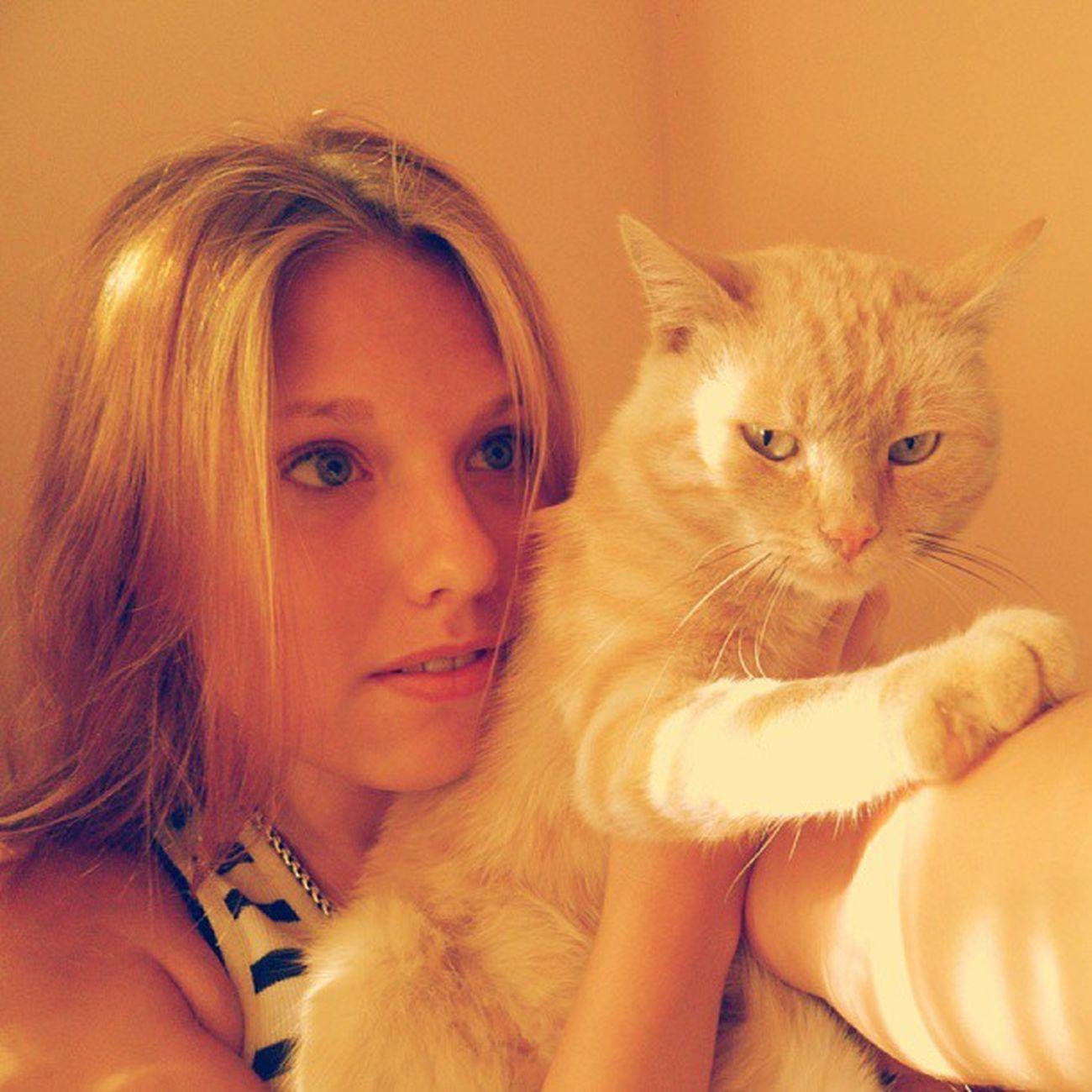 Смотрю кот в ударе. фотоскотом кот мойкот Kat mykat