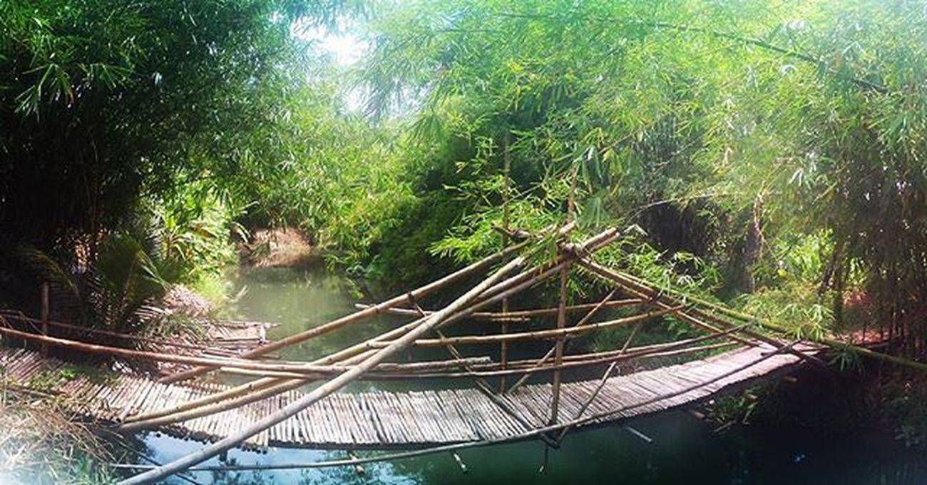 Will you cross bamboo bridge?? Captured by AndroidOne Android Droid Mobileart Mobilephotography F4F Androidography Androidinstagram Tagsta_android S5 Androidonly Androidcommunity Androidnesia AndroidPhotography PhonePic Androidgraphy Awesome Androids Phonesia Tagsta Fotodroids Instaphonegrapher TeamANDROID  Tagstagramers Ignation igaddict Picoftheday photooftheday