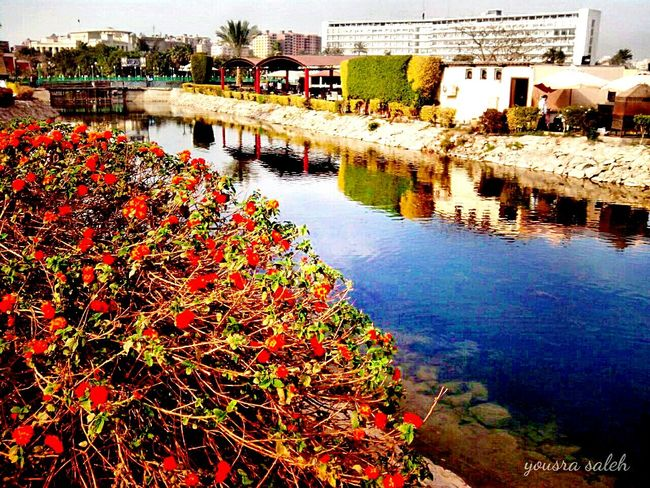 Colour Of Life Romanticism Of Nature❤ Urban Spring Fever Springtime Trees Trees And Flowers Lake Blue Lake Lake View Lake And Trees Lakescape Water_collection Reflections In The Water Reflection_collection Reflections And Water Lake Reflection Naturephotography Beuty Of Nature Colors Of Nature Colors Of Spring Hdr_Collection Tranquil Scene Tranquility Taking Photos Love To Take Photos ❤ 🌺🌻🌸🌿