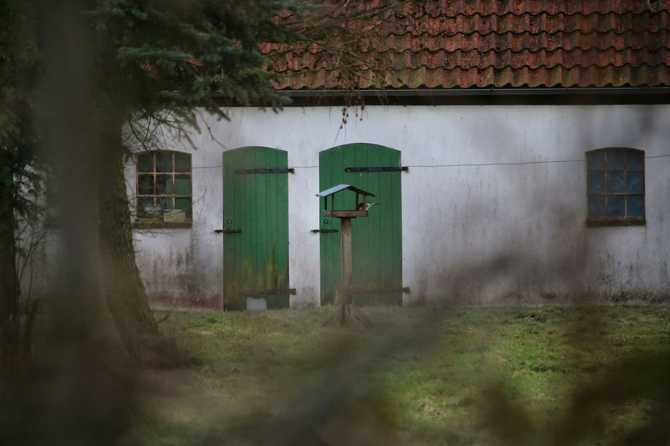 Through Green Doors Stables Bird House Farm Built Structure Door No People Grass Tree Day Outdoors Nature Freshness Beauty In Nature Window Roof StillLifePhotography