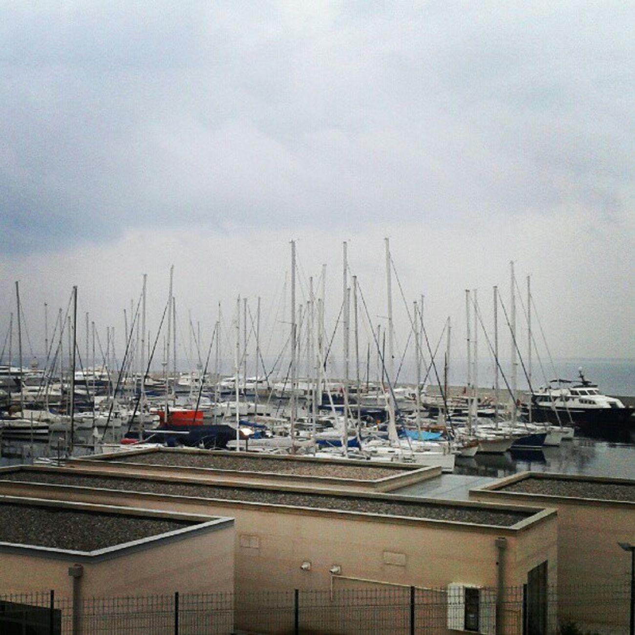 Yacht Sea Seaport Yalova Türkiye Turkey Style Liman Lifestyle Life Enjoy Istanbul Instagram Instabeauty Insta Instagood Instaturkiye View Goodmorning Restaurant