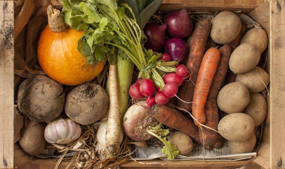 Beautiful stock photos of vegetables, Horizontal Image, Potato, carrot, close-up