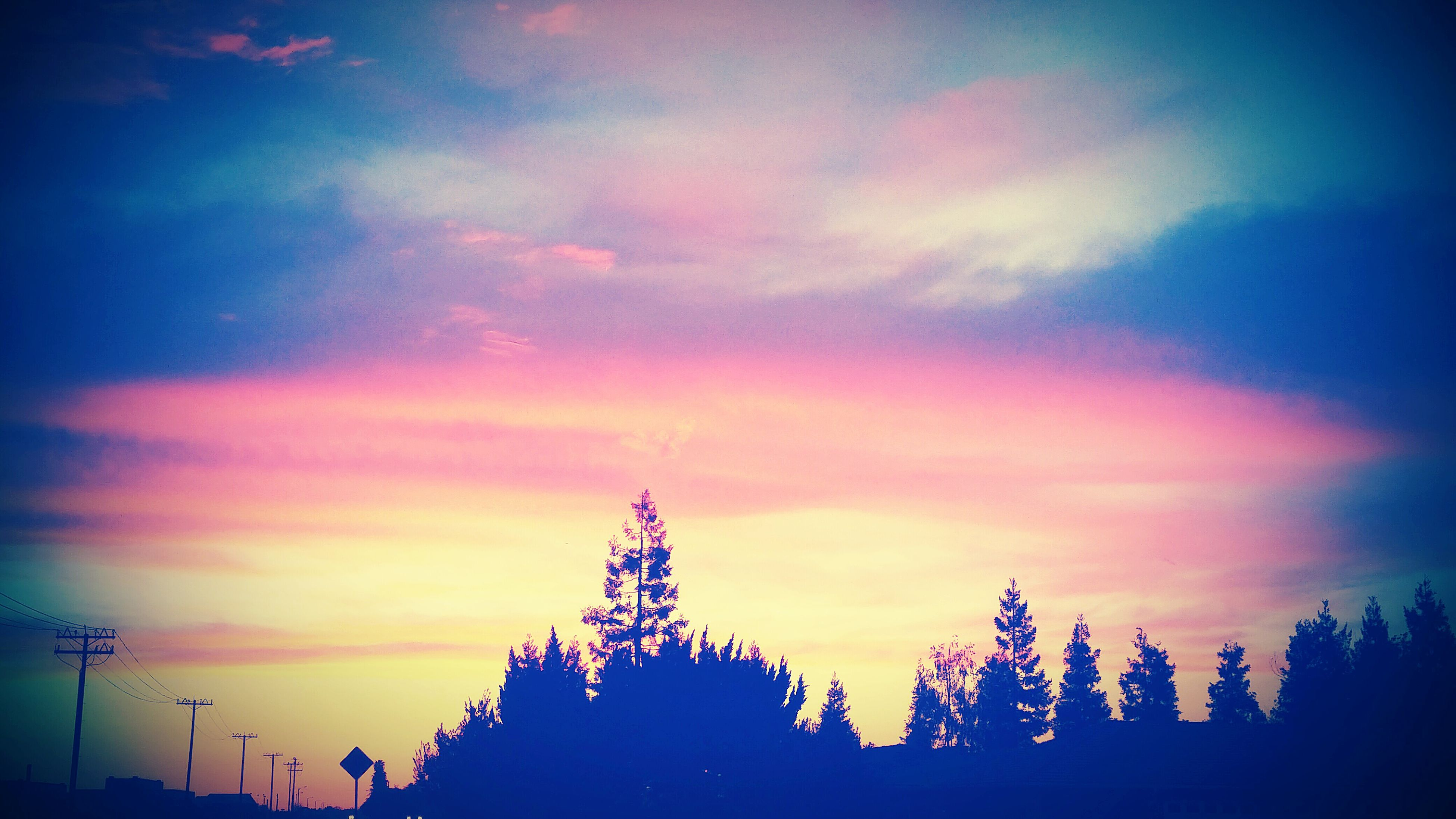 tree, silhouette, sunset, scenics, tranquil scene, sky, tranquility, cloud, beauty in nature, majestic, nature, atmosphere, high section, outline, solitude, cloud - sky, dramatic sky, growth, dark, atmospheric mood, pink, non-urban scene, outdoors, moody sky, multi colored, remote, pink color, no people, romantic sky, cloudscape