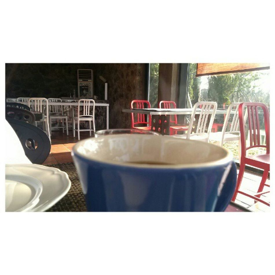 식사후 커피한잔의 여유 현실은 아놔 바로교대 옵티머스LTE