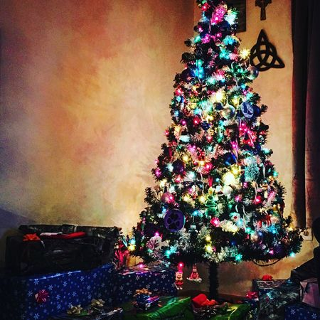 I love my little Christmas tree. 🌲 Christmas Lights Christmastime Christmas Decorations Christmas Is Coming Christmas Time First Eyeem Photo Christmas Around The World Wisconsin Sextonville Wisconsin Christmas Tree Christmastree Best Christmas Lights Christmas Spirit Christmas Lights!  Pine Tree