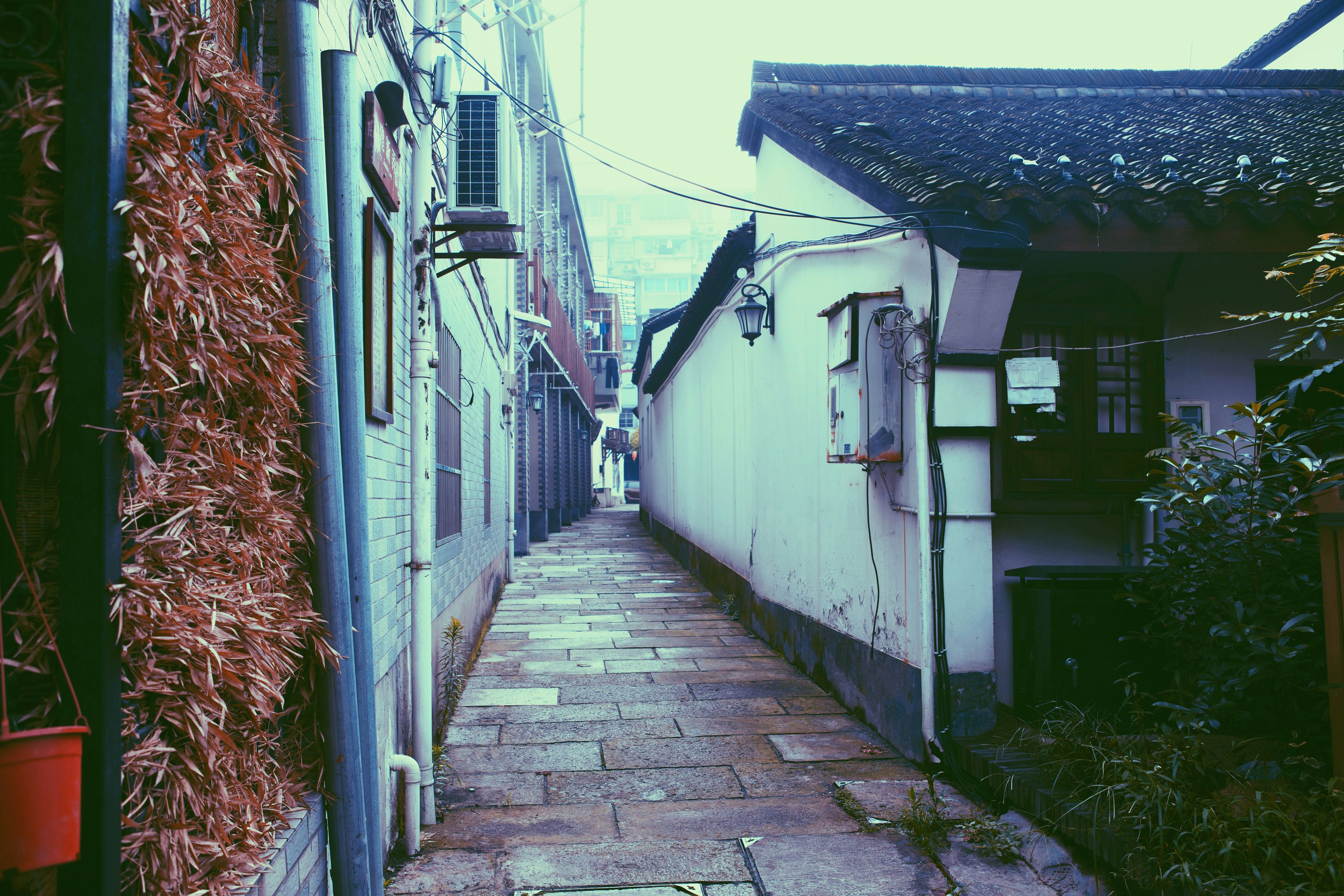 architecture, built structure, building exterior, the way forward, house, residential structure, residential building, alley, narrow, diminishing perspective, walkway, building, street, town, vanishing point, pathway, day, footpath, tree, plant
