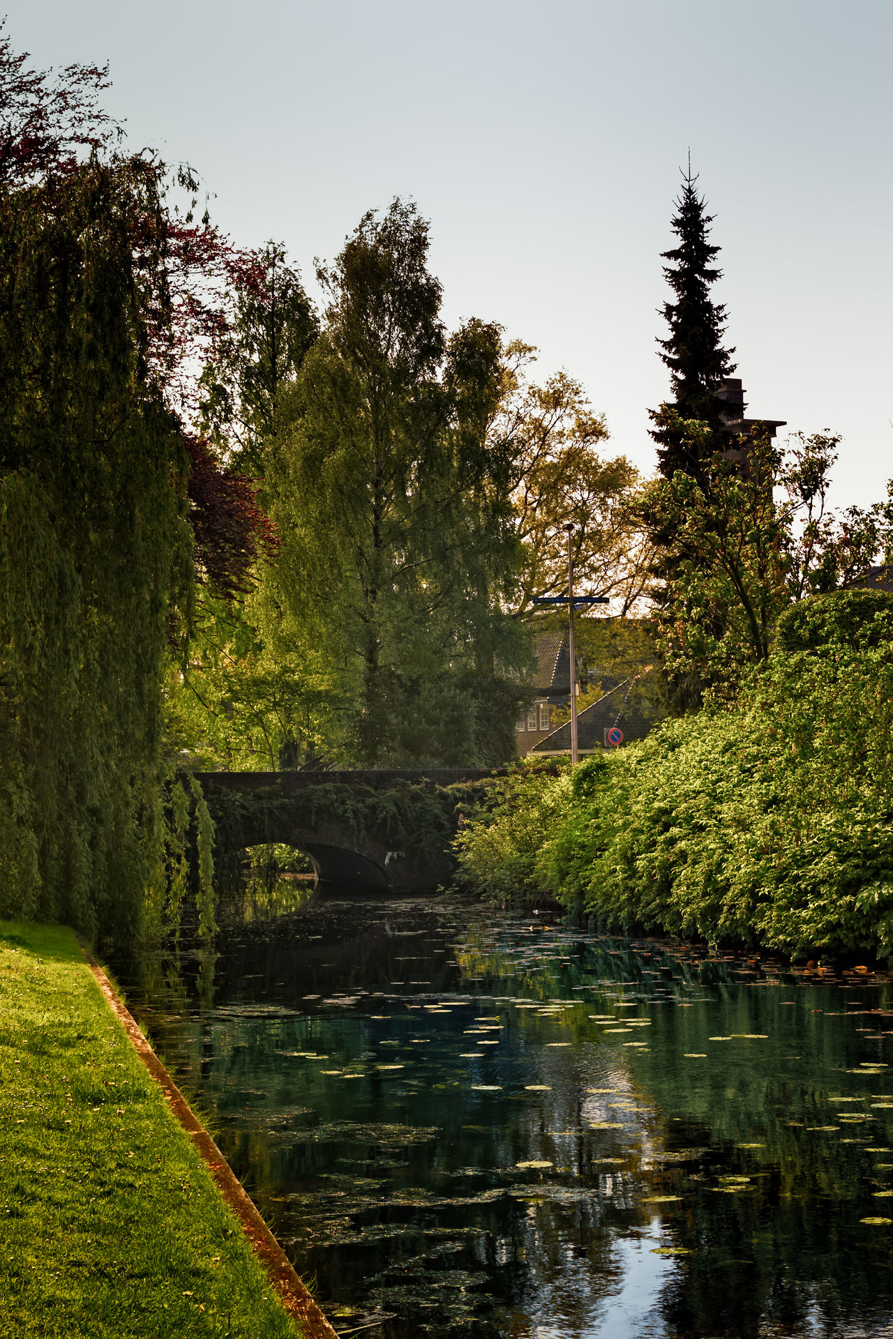 Old Bridge In Bussum Beauty In Nature Day Lake Landscape Nature No People Outdoors Reflection Reflection Lake Scenics Sky Tourism Tranquility Travel Travel Destinations Tree Vacations Water