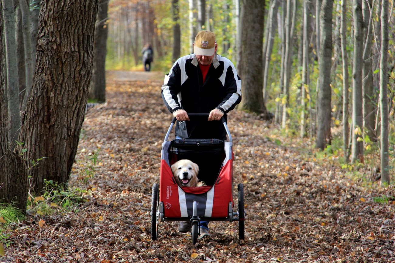 Still walking together and check out the smile on that dog's face! Check This Out Enjoying Life Dog Love Doglover