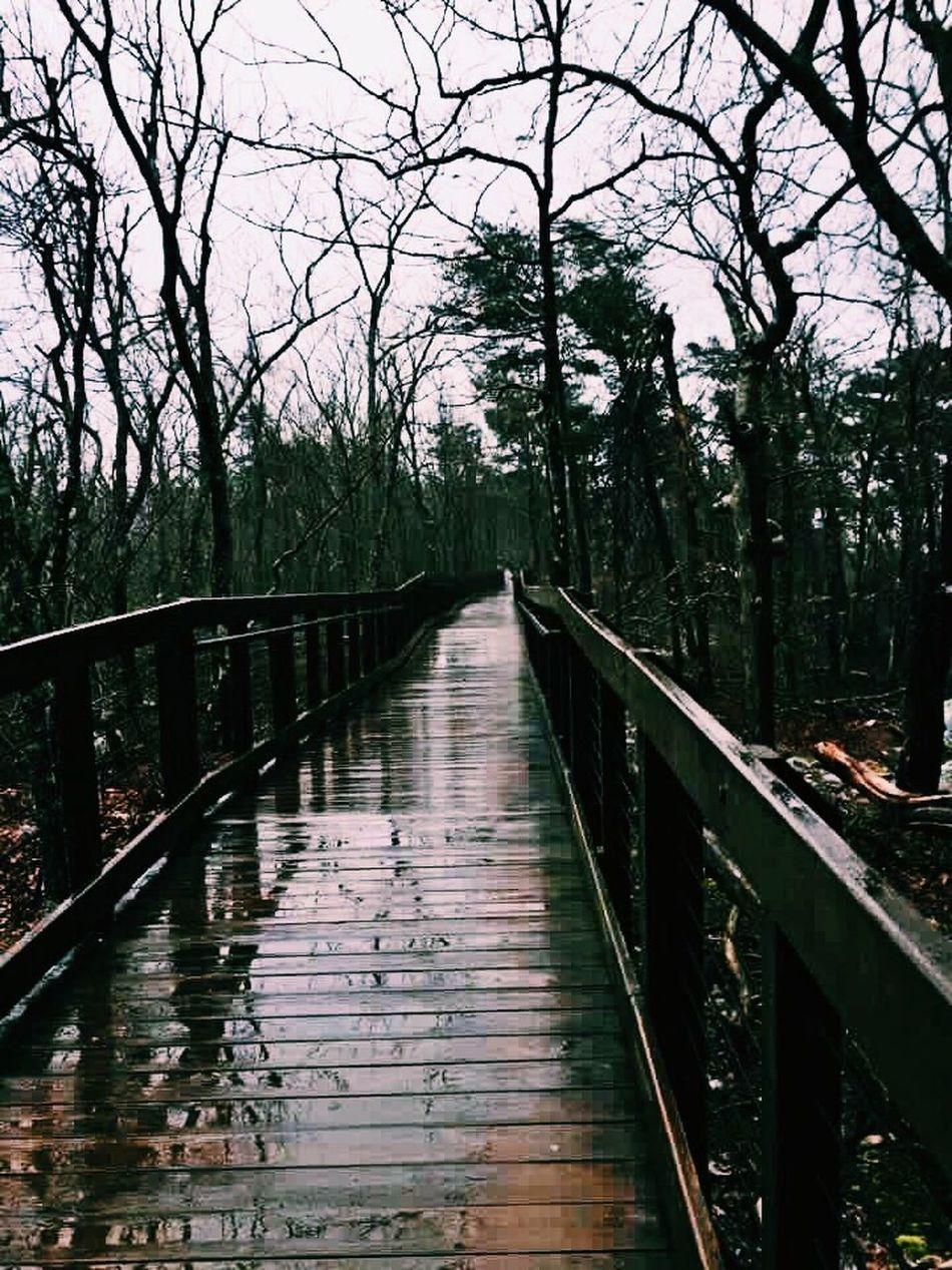 😌🍃🌨 Rain Photography Walking Bridge Wet Nature