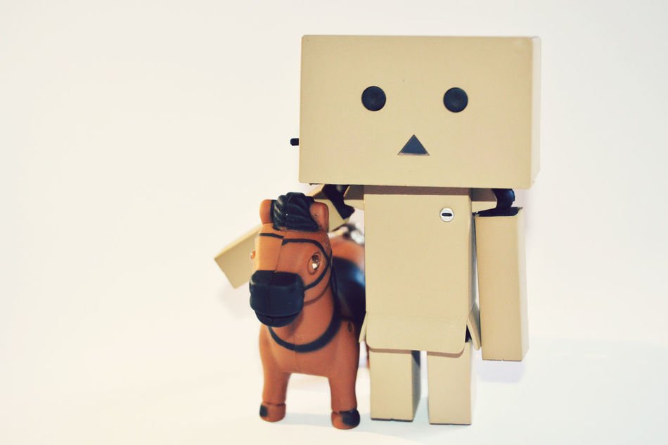 Beautiful stock photos of box, Animal Representation, Arrangement, Box, Cardboard