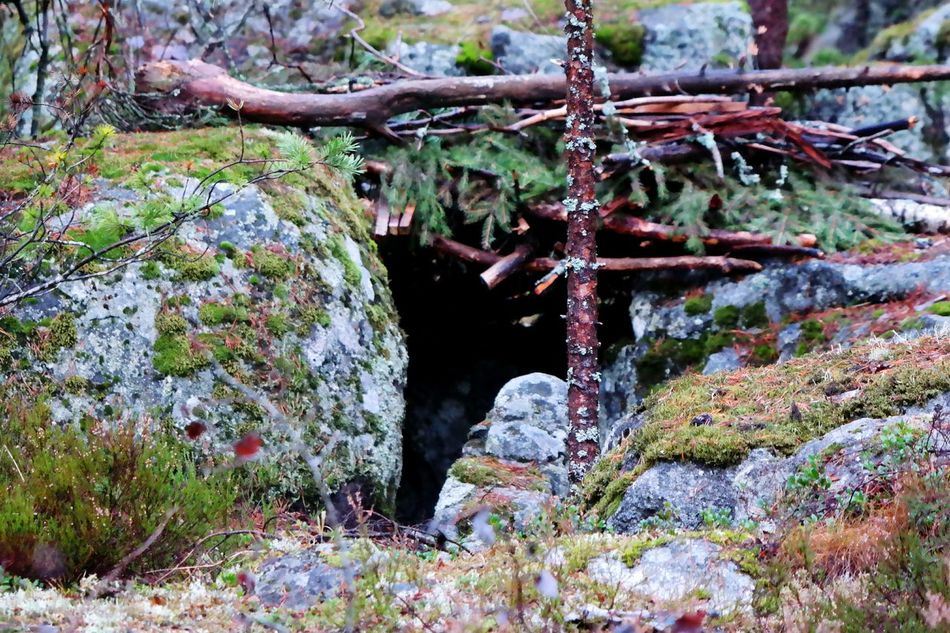 Cave House Cave Nature Cold Temperature