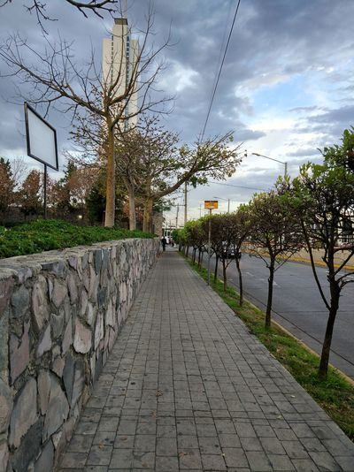 Cloud - Sky Outdoors Tree Sky No People Day Nature Bird Patch Camino