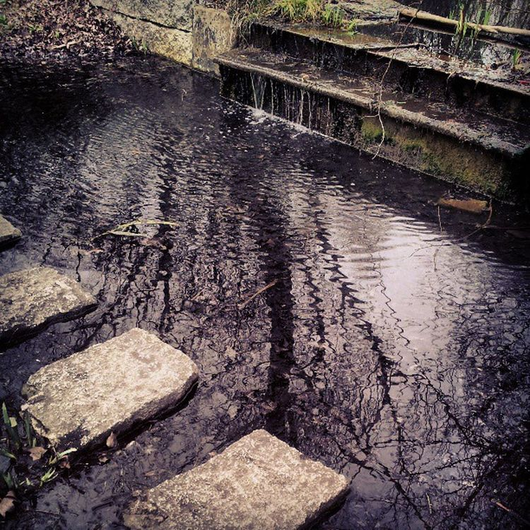 Steppingstones Stream Water Reflection waterfall russiadock russiadockwoodland russiadockpath russiadockwoodlands