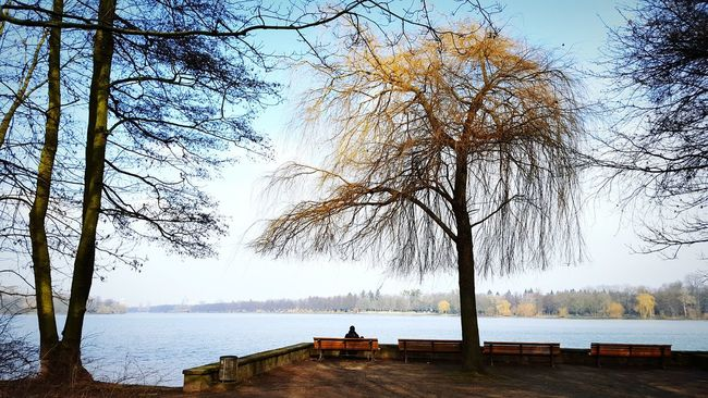 Maschsee Hannover Hannoverliebe Sunny Peaceful Peace And Quiet Lake Lake View Tree Trees Relaxing Relaxing Moments Relaxing In The Sun Relaxing View