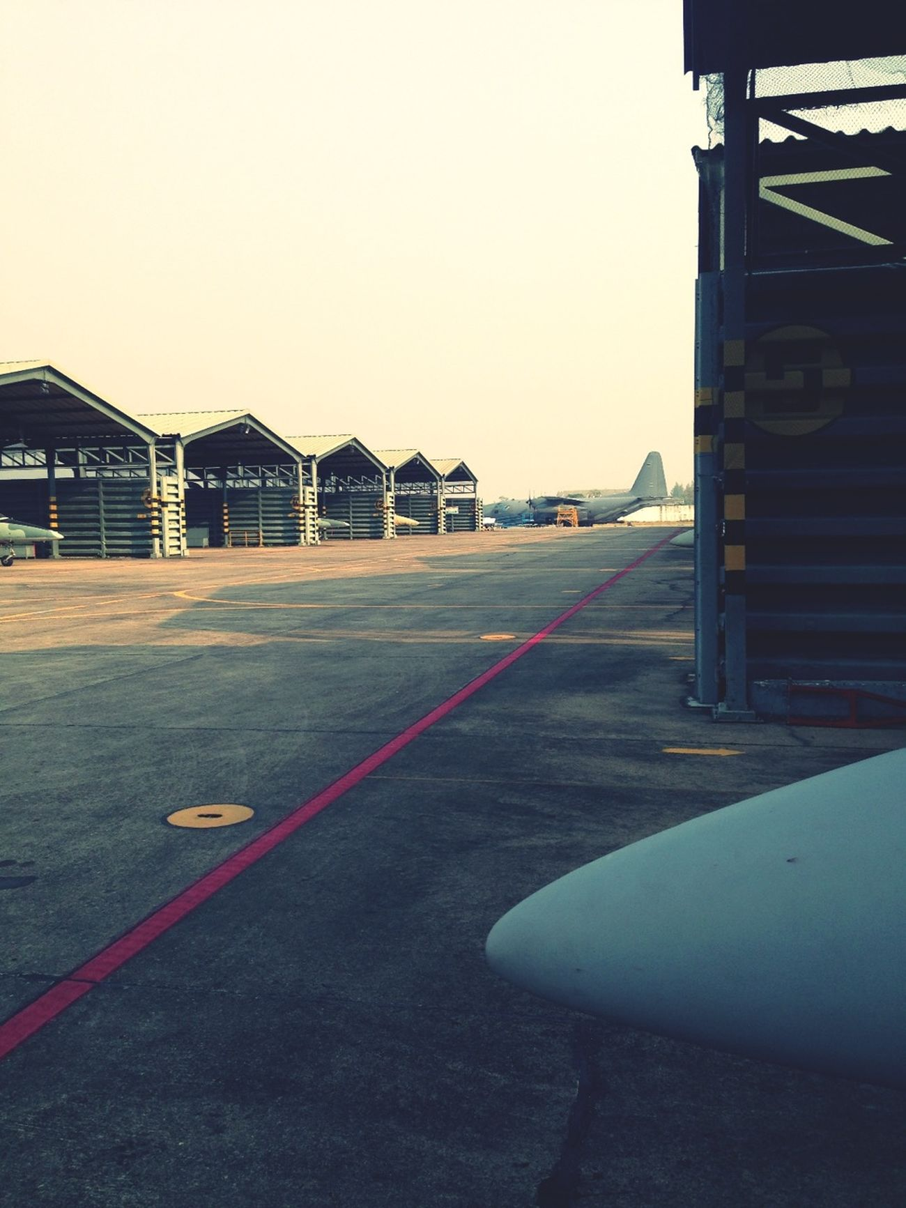 Wing 411