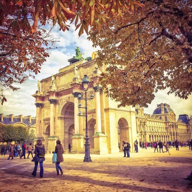 Good Evening Paris! Bonsoir Paris Architecture Parisweloveyou Eyem Best Shot - Architecture Paris ❤ Autumn Autumn Leaves Photooftheday EyeEm Best Shots Louvre Tree