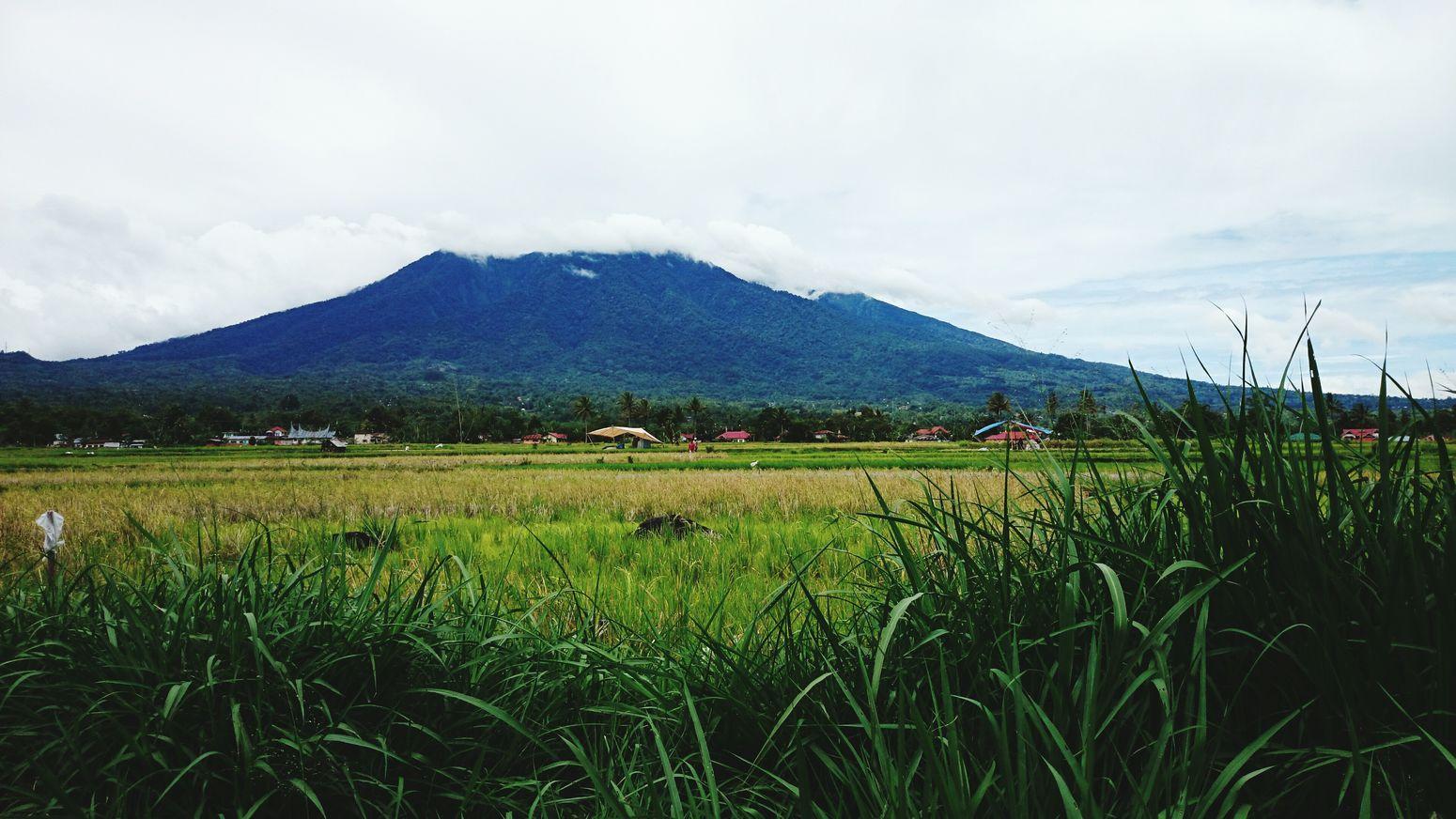 Gunung berapi sumbar Eye Em Nature Lover The Week On Eyem Streetphotography Nature_collection