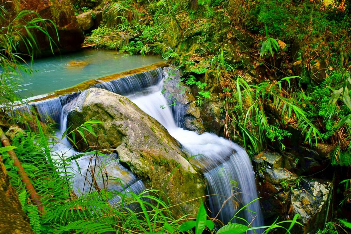 这几天发手机有的照片 Relaxation Plant Waterfront 旅行摄影 Scenics Beauty In Nature 风光摄影 这是我的城市 Nature NIKON D5300 Green Enjoyment Environment Flowing Flowing Water Nikon 好好生活