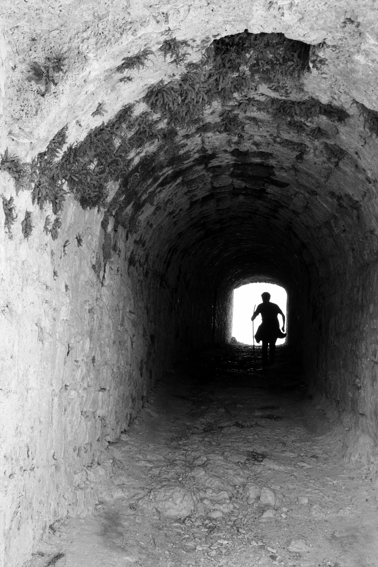 Castle Day Indoors  Lifestyles Light At The End Of The Tunnel Men Nature Old Buildings One Man Only One Person Only Men People Real People Ruin Running Silhouette Silhouette The Way Forward Tunnel