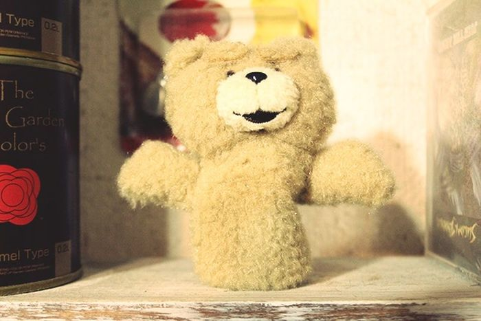 Ted Toys Like