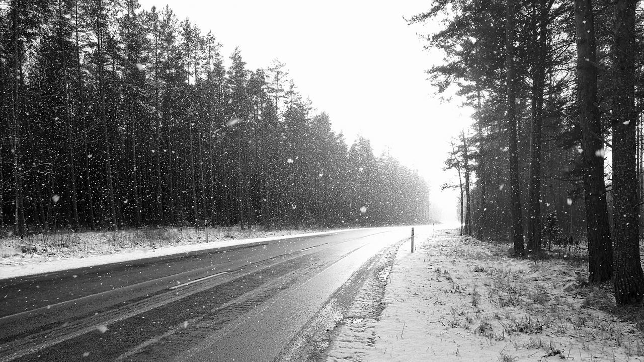Snowy Nature Snowing Roadtrip Snowflakes Sunny Winter Day Road And Trees Winter Road Black And White