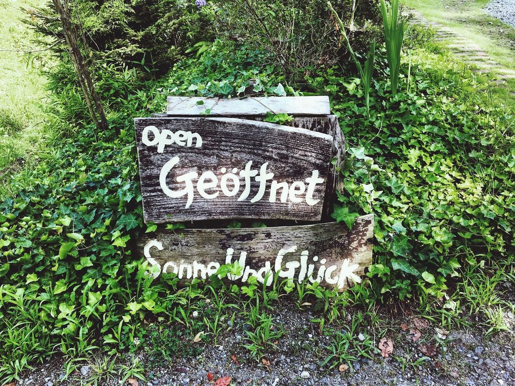 Text Green Color Outdoors Grass No People Nature Communication Plant Day 地元 パン屋 ドイツ