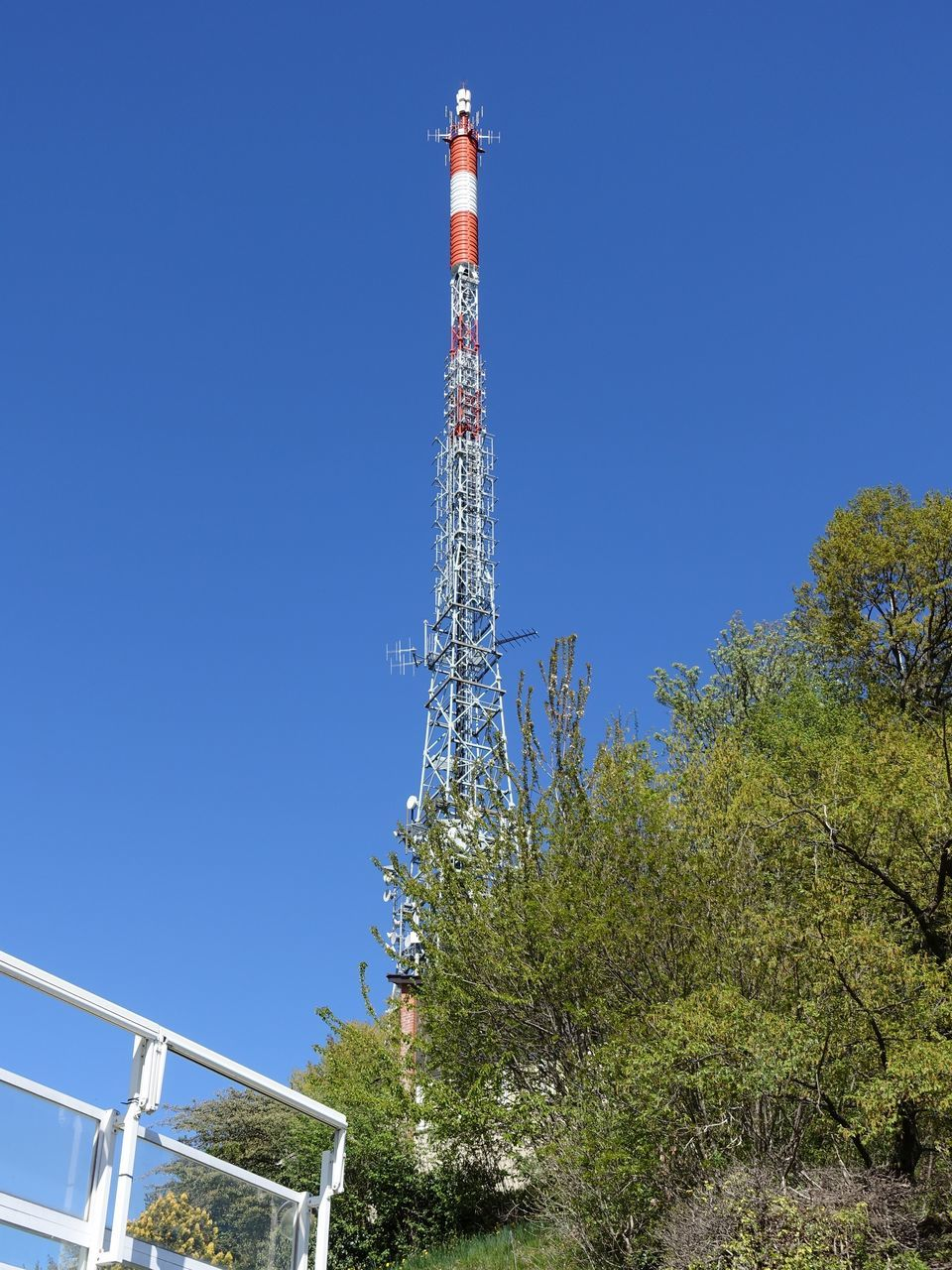 clear sky, tree, tower, copy space, low angle view, day, blue, outdoors, built structure, no people, nature, architecture