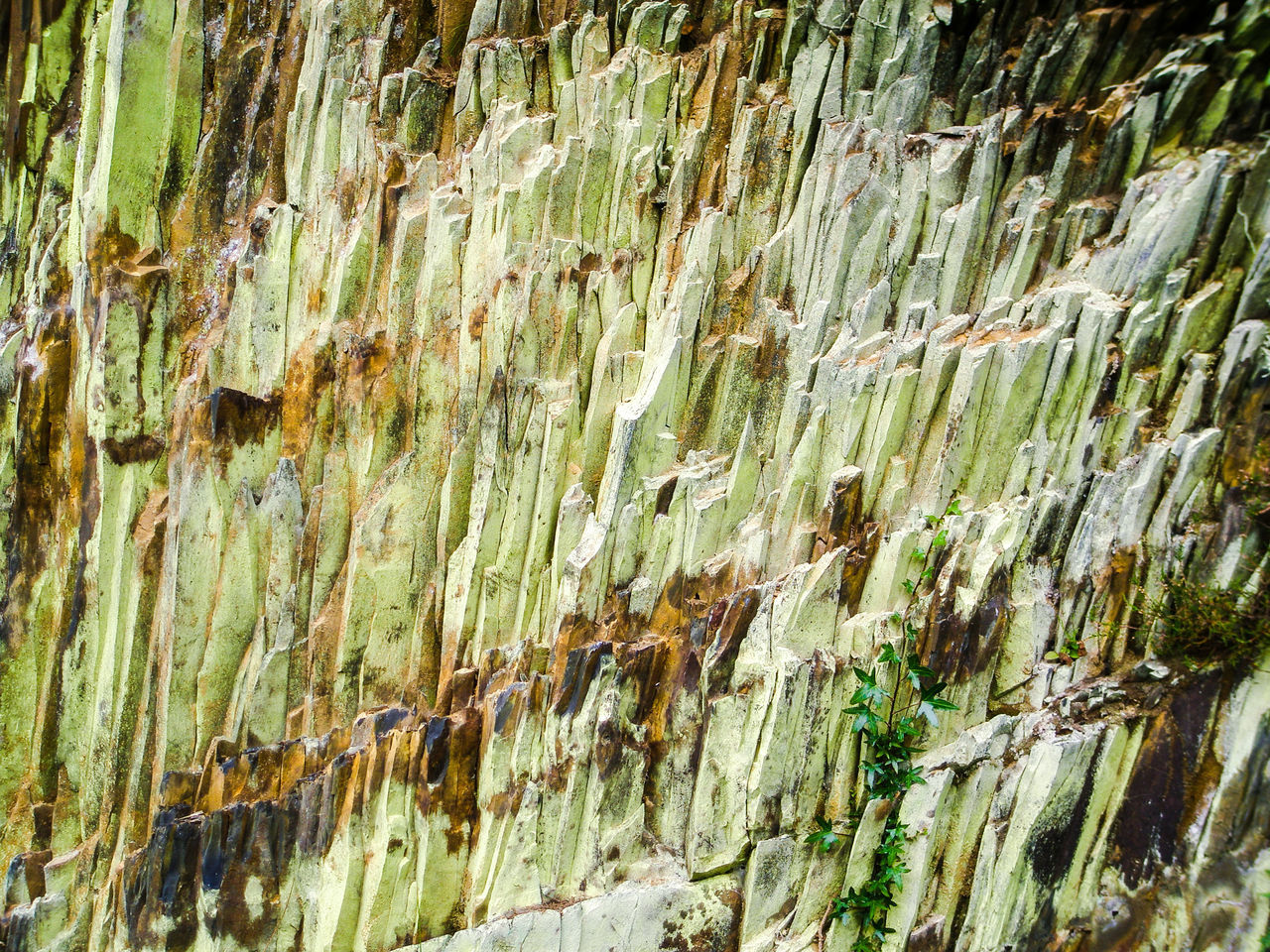 Green Rocks Backgrounds Full Frame No People Nature Day Close-up Outdoors Ivy Rock Rock Formation Wales Slate Moss Lychen Fractured Cracks Metamorphic Rock Face Cliff Green Color Britain Uk