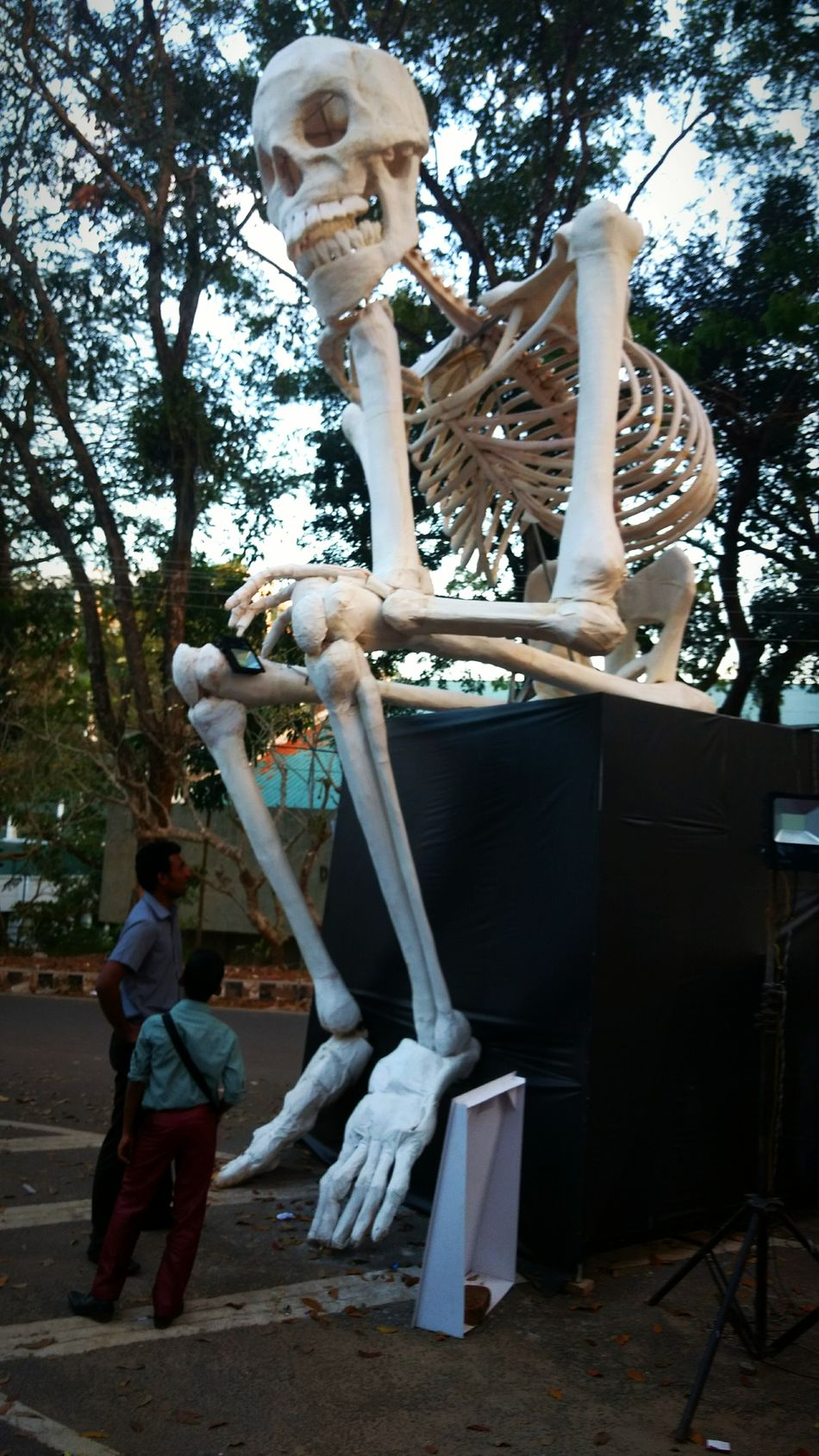 Me wanting to find my one true love! 🤣💀💀 Sculpture Statue Skeleton Skeleton Art Learn & Shoot: Simplicity Taking Photos Tadda Community Check This Out From My Point Of View