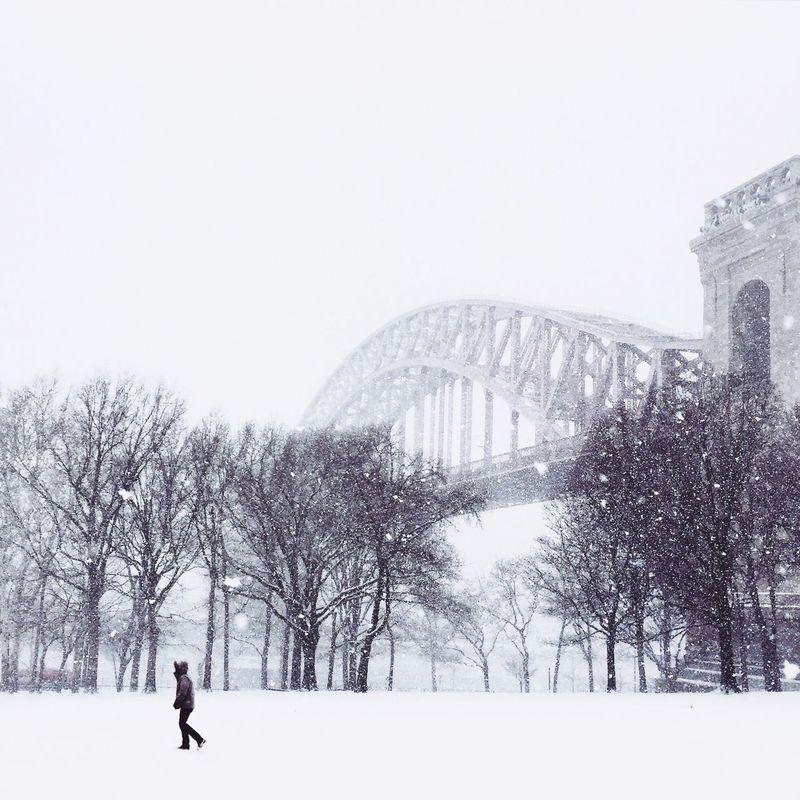 Deepfreeze Walking Around The Best Of New York