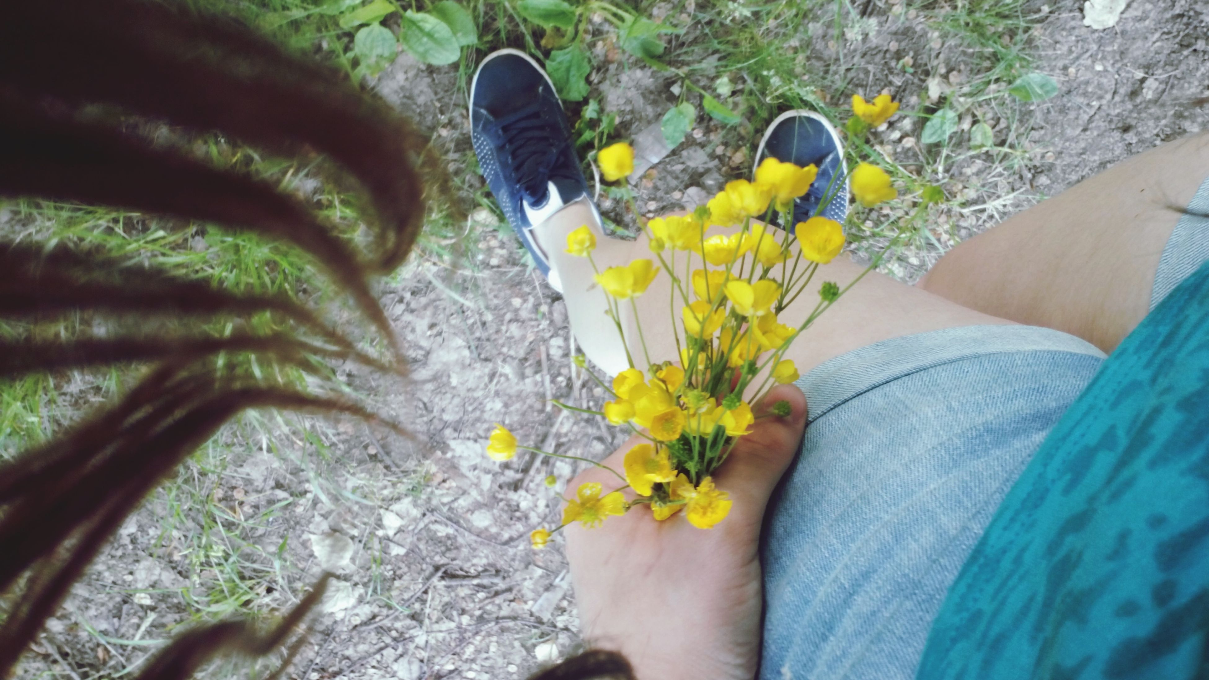 low section, person, personal perspective, flower, lifestyles, leisure activity, high angle view, unrecognizable person, standing, plant, human foot, men, yellow, holding, growth