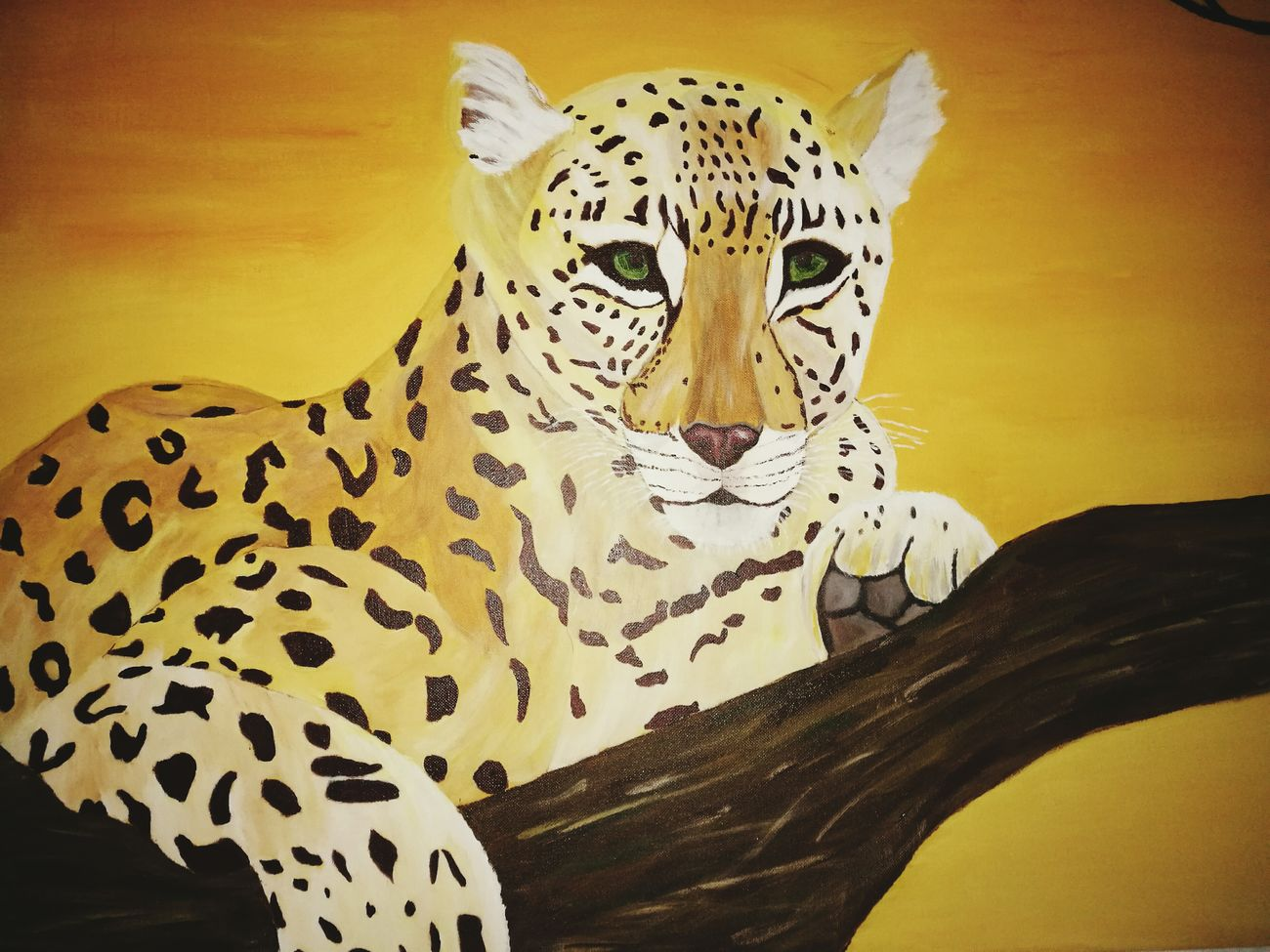 Picture Paint Own Picture Own Painting Leopard Africa African Safari Afrika Wildlife Wild Animal Taking Photos EyeEm Nature Lover Animal_collection Natural Beauty