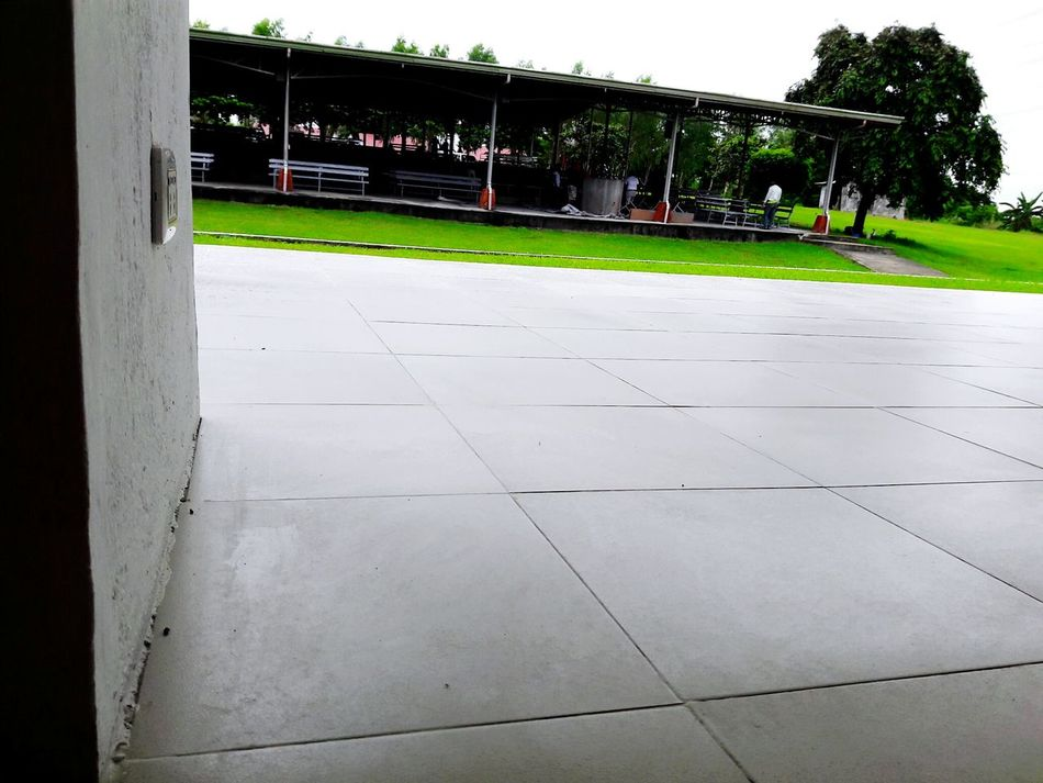 Assembly Hall Stage Green Color Built Structure Outdoors Surface Level Volunteering