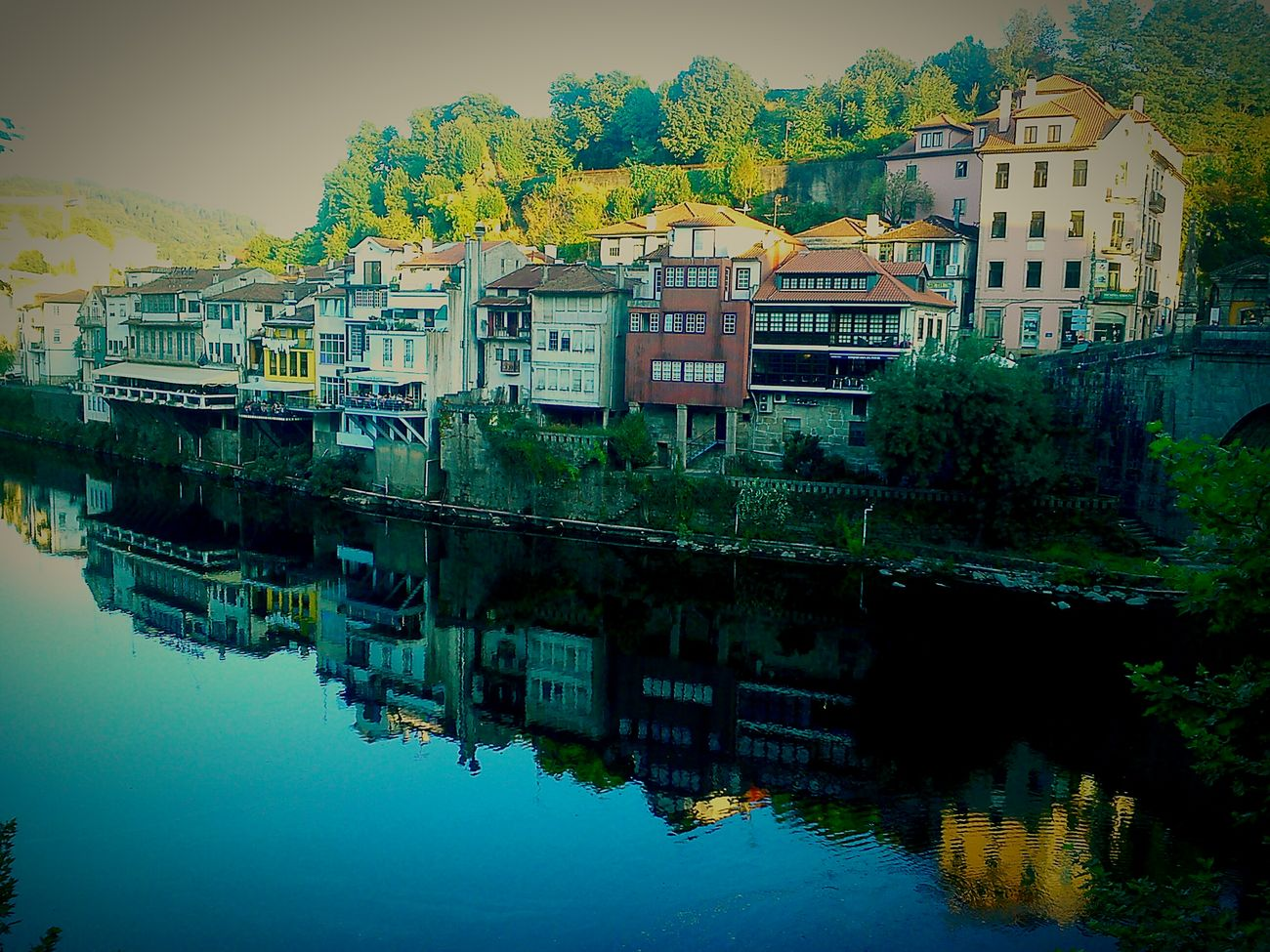 Colour Of Life Riverreflection Capture The Moment