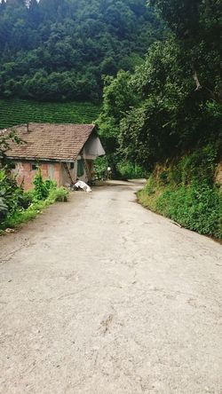 Village Village Life Little House Forest Peaceful Silent Way Place To Be