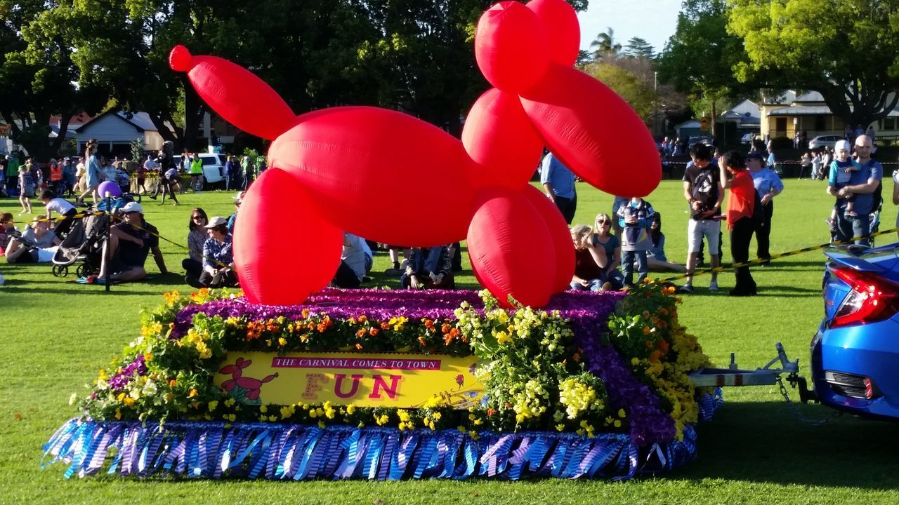celebration, large group of people, tree, real people, balloon, outdoors, day, red, grass, men, close-up, people