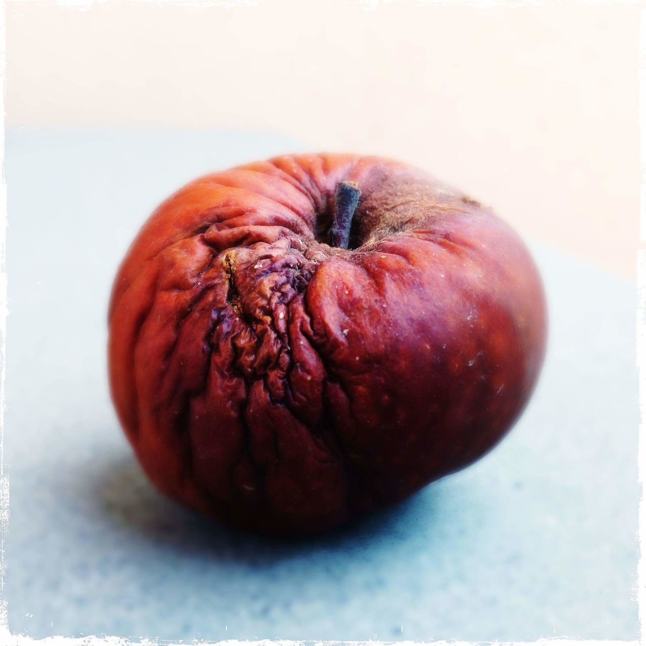 Color Palette Apple - Fruit Single Object Still Life Close-up Organic Fruit Hipstamatic HipstaOfTheDay