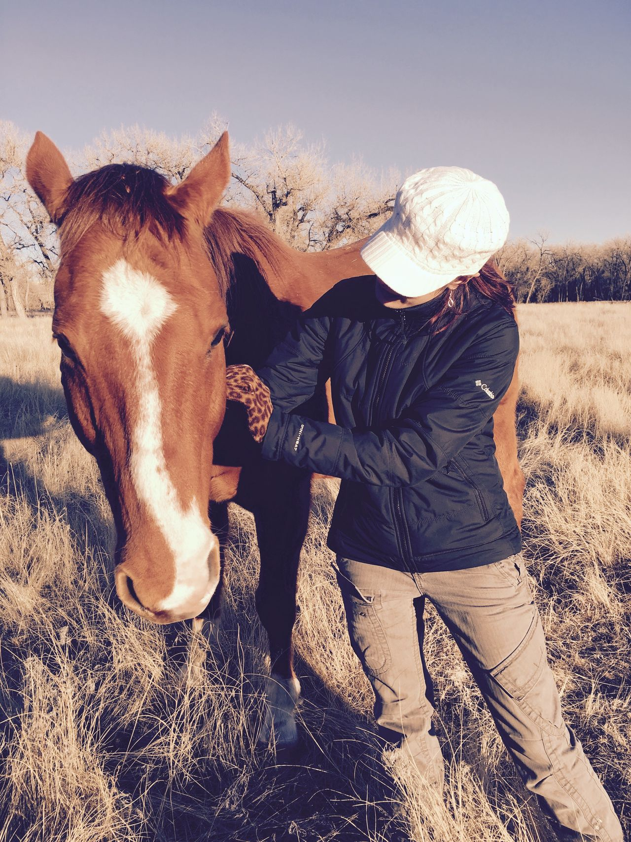 Making a friend Domestic Animals Livestock Animal Themes Mammal Horse Sky Nature One Animal Field Outdoors Agriculture Grass Landscape Day One Person Love Beauty In Nature Perspective Photography Petting Animals Relaxing Moments Colorado