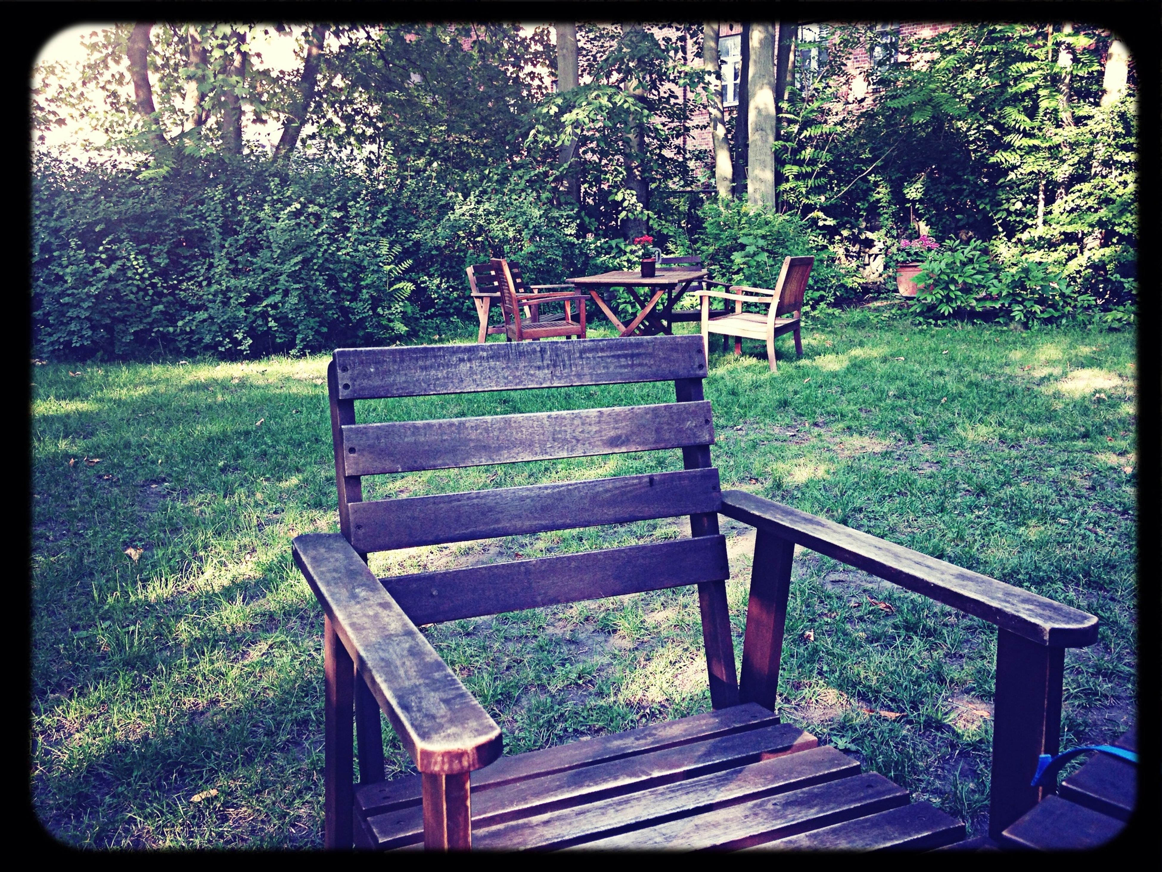 tree, bench, transfer print, growth, empty, wood - material, chair, park bench, absence, park - man made space, green color, tranquility, auto post production filter, plant, nature, seat, wood, wooden, railing, park