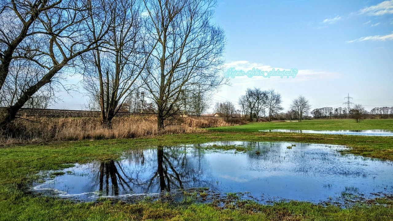 Urbanscape Tree Trunk Urban Nature Urban Lifestyle Urbanexploration Urbanphotography Water Reflections Outdoor Photography Bruchmühlbach-Miesau Earth,wind&water Urban Spring Fever
