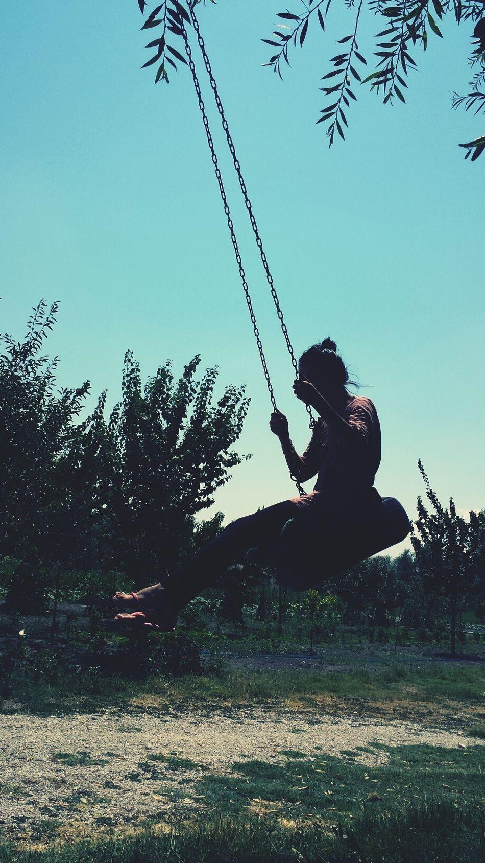 Hugging A Tree Relaxing Swing Swing Swing