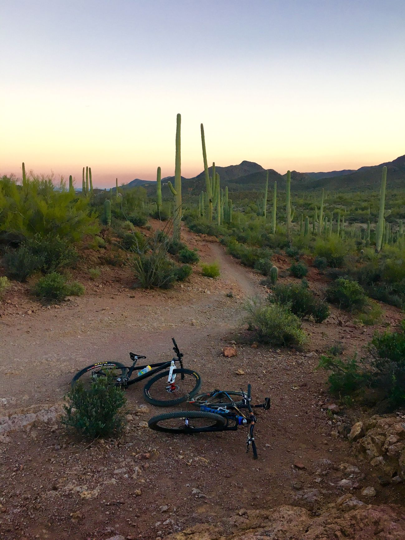 Mountain Biking through the Dessert
